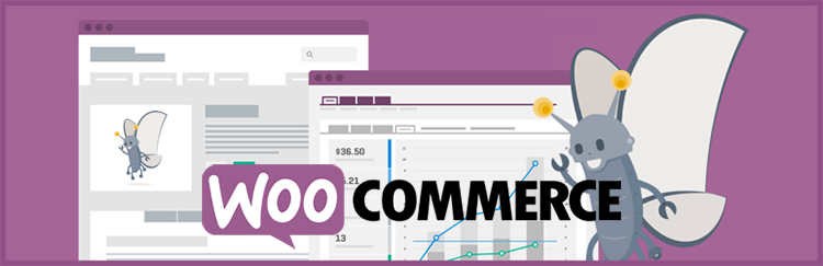Woocommerce Plugin WordPress