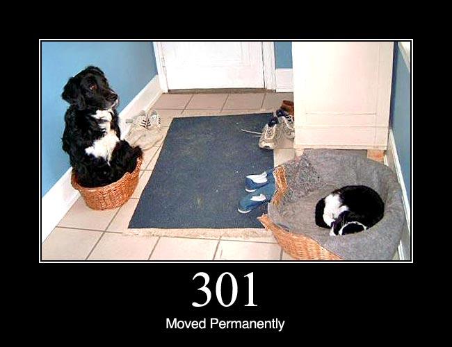 301-divertente