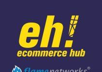 EcommerceHub e FlameNetworks